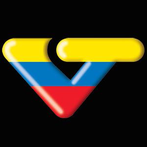 vtv_logo_300x330