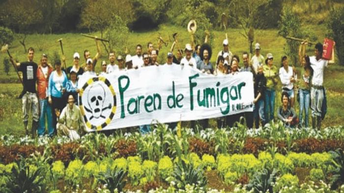 parendefumigar-colombia